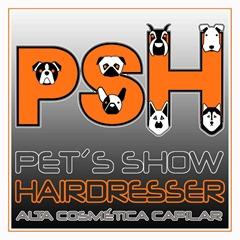 PSH Styling Group