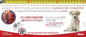 EL_guardian_tarjeton_Página_2